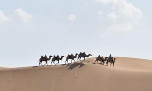 内蒙古有什么好玩的旅游景点?内蒙古十大旅游