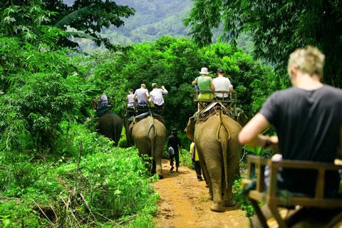 2016 泰国旅游泰国旅行注意事项,泰国自由行自助游 - 网友经验分享,实用信息