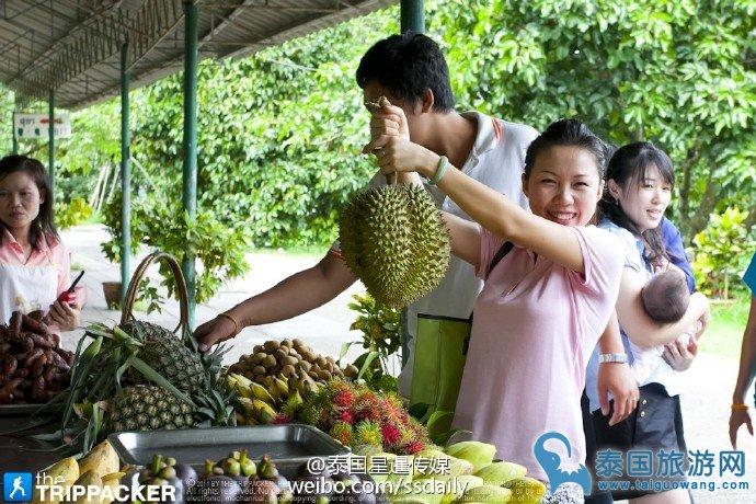 泰国水果榴莲哪里的最好?