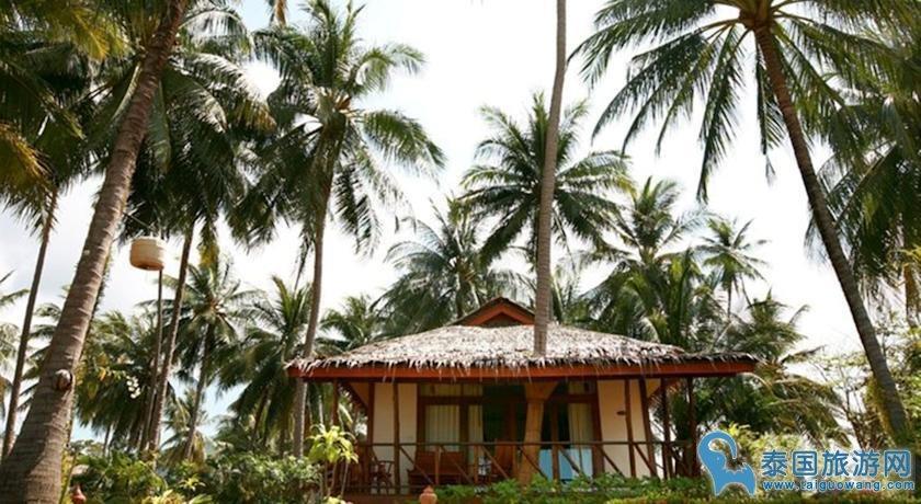 苏梅岛独栋小屋别墅酒店--利帕海滩小屋度假酒店