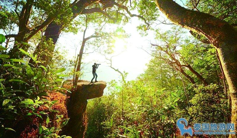 你知道泰国有几大世界遗产景点吗?