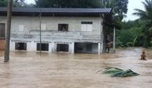 泰国南部近日依旧有强降雨 游客注意安全