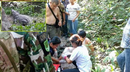泰国考艾公园鳄鱼咬伤自拍游客 提醒游客五靠近鳄鱼栖息地
