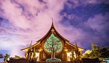 乌汶府景点:Wat Sirindhorn Wararam生命树夜光寺庙