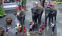 曼谷考山路泼水节泼水活动取消 举办浴佛布施典礼