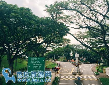 亚洲第一大学—新加坡国立大学