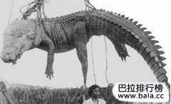 世界上最大的鳄鱼排行榜
