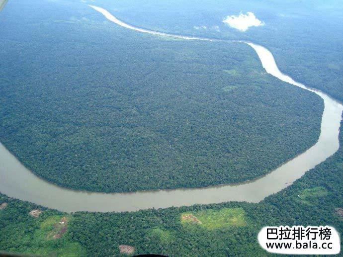 盘点全球十大原始森林