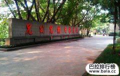重庆最牛十大学校排名,从小学、初中到大学!