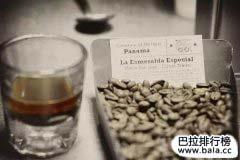 世界上最贵的咖啡排名前十位