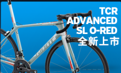 中国十大自行车品牌排行榜