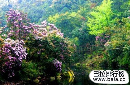 南宁旅游景点大全介绍图片