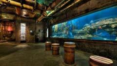 世界十大水族馆排名,中国一家上榜!