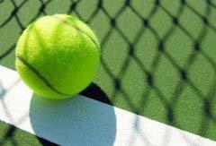 世界著名十大网球明星排名