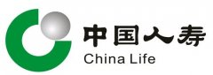 中国十大保险公司收入排名