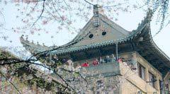 2018中国颜值最高大学排行榜Top10