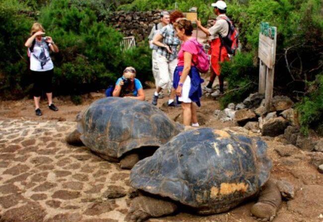 加拉帕戈斯国家公园