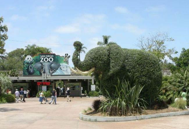 美国圣地亚哥动物园
