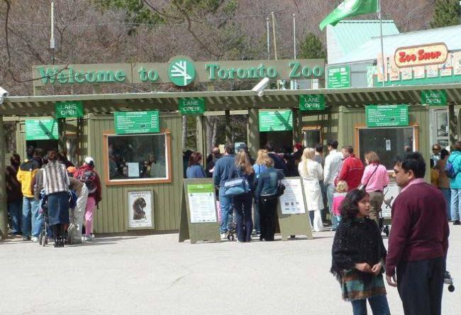 加拿大多伦多动物园