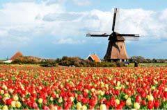荷兰最受欢迎的十大旅游景点