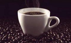 全球最贵的九种食物,象屎咖啡榜上有名