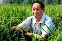 中国最伟大的科学家 袁隆平养活了数亿中国人