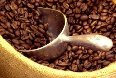 盘点全球十大咖啡生产国,巴西第一越南第二
