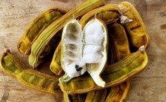 世界10大坑人黑暗水果排行,印加豆排在第一名