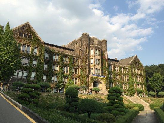 韩国留学什么专业好 韩国理科最好的大学前十名
