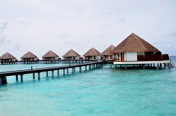 亚洲人口最少的国家排名前十,第一名马尔代夫