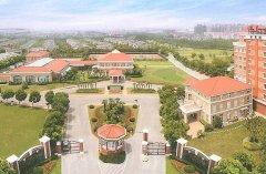 上海十大国际贵族学校排名,常青藤学校排第一