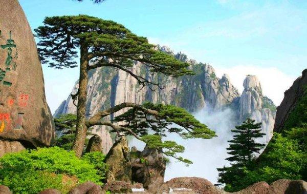 中国十大爬山旅游景点,黄山看日出值得一去