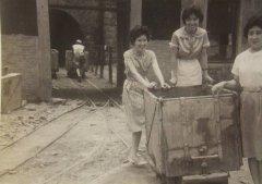 中国台湾五大家族,曾经最有权势的家族