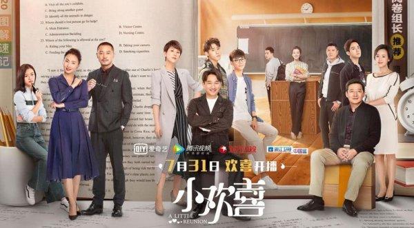 2019国产电视剧排行榜前十名,小欢喜拔得头筹