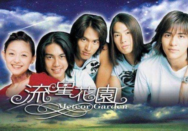 十大怀旧台湾偶像剧排行,每部都是经典电视剧