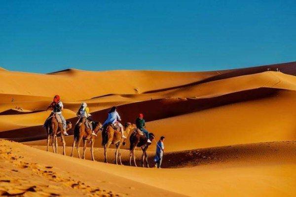 世界十大沙漠排名,冠军是撒哈拉沙漠