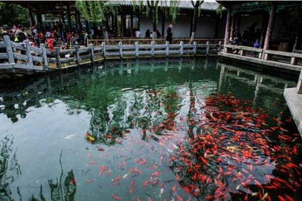 """中国泉水最多的城市,济南是著名的""""泉城"""""""
