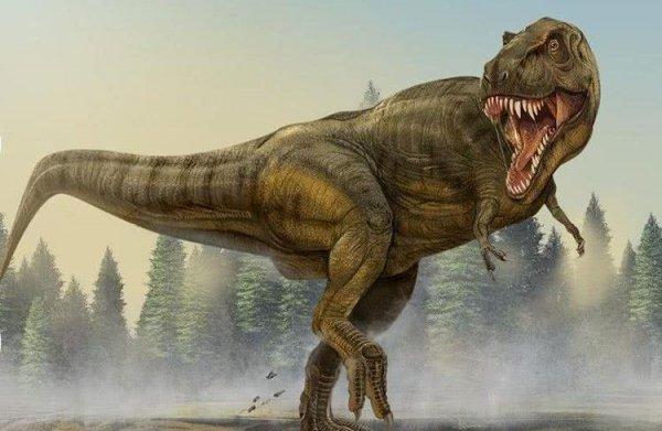 世界十大恐龙之最,异特龙智商最高