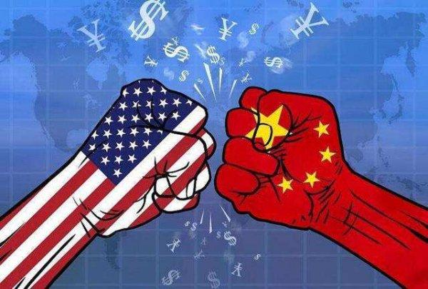2019年中国十大热点事件,中国女排取得11连胜