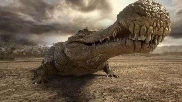 十大灭绝的远古生物,帝王鳄曾是地球最大鳄鱼