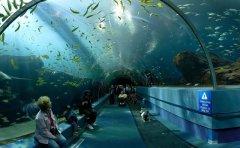 世界上最大的水族馆排名,中国有两处上榜