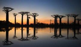 海岸线最长的10个非洲国家 第一名是马达加斯加