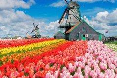 """世界海拔低的五个国家,荷兰被称为""""海下王国"""