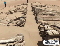 新疆大沙漠考古十大发现,尼雅遗址上榜