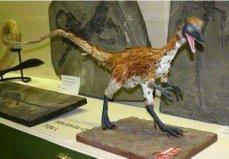 世界上战斗力最弱的十大恐龙,第一名不足20厘米