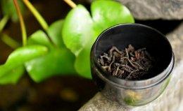 世界上最贵的茶叶,大红袍1公斤达1040万元