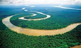 """世界上最大的平原,被称为""""地球之肺"""""""