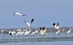 中国十大淡水湖大小排名,江苏独占三席