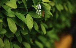 中国三大鬼节的来历,都有哪些寓意?