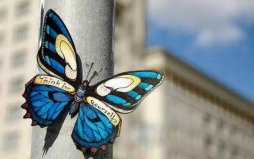 心理学上的十大效应,蝴蝶效应排在首位